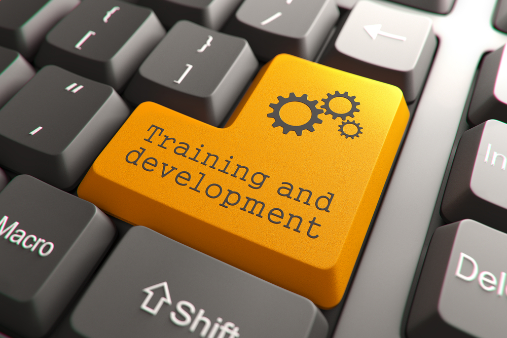 Training & Development Image